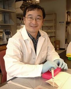 Dr. Bing Yang