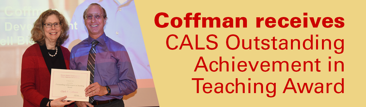 Coffman receives CALS Outstanding Achievement in Teaching Award